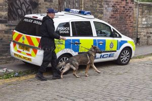 police dogs thornton road sm.jpg