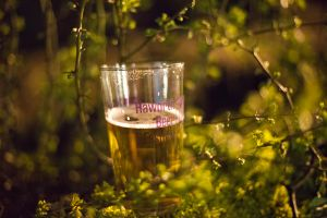 _haworth beer fest 8a.jpg