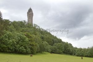 william wallace monument 4 sm.jpg