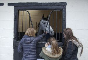 _middleham open day 30.jpg