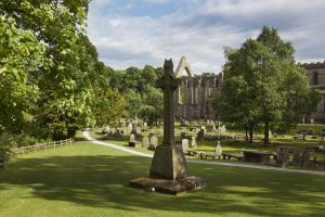 bolton abbey june 2017 4 sm.jpg