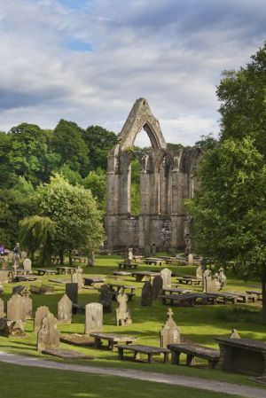 bolton abbey june 2017 5 sm.jpg