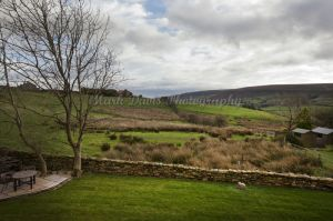 Gorgeous rosedale heather view 65.jpg