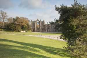 newstead abbey image 16 sm.jpg