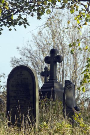c63-undercliffe 15 october 2011 2 sm.jpg