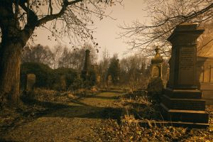 undercliffe_cemetery_bradford_december_29_2010_image_10_sm.jpg