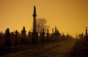 undercliffe_cemetery_bradford_december_29_2010_image_11_sm.jpg